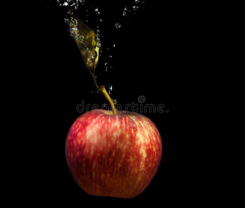 Chapoteo rojo de la manzana y del agua. foto de archivo