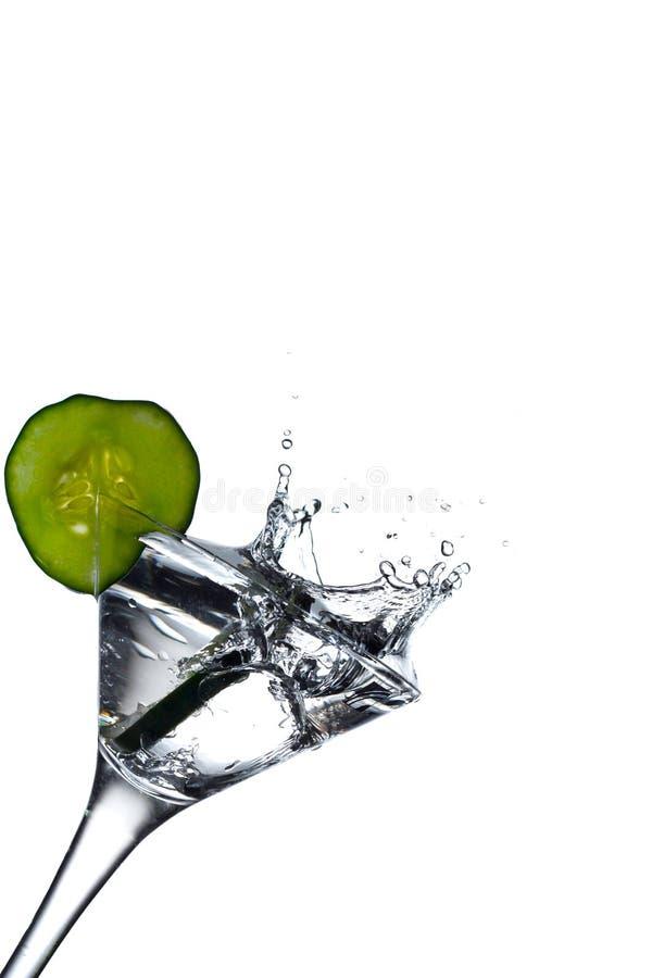 Chapoteo tónico de la ginebra aromática en el vidrio de martini imagen de archivo