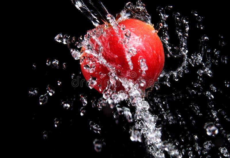 Chapoteo y manzana del agua dulce fotografía de archivo