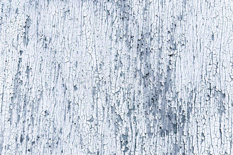 Download Chappy δάσος επιφάνειας χρωμάτ&om Στοκ Εικόνα - εικόνα από ρωγμή, κλείστε: 2226423