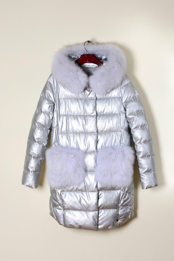 Chaqueta de plata en la suspensión, abajo chaqueta con un cuello de la piel y los bolsillos de la piel outerwear Cierre para arri imagen de archivo