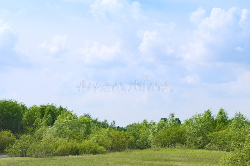 charakter rolnictwa krajobrazu lato zdjęcie stock