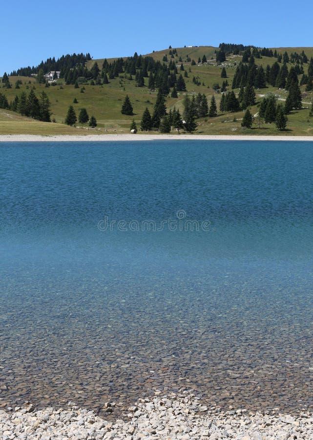 charca alpina preciosa con la tabla cristalina del agua y de la grava fotos de archivo libres de regalías