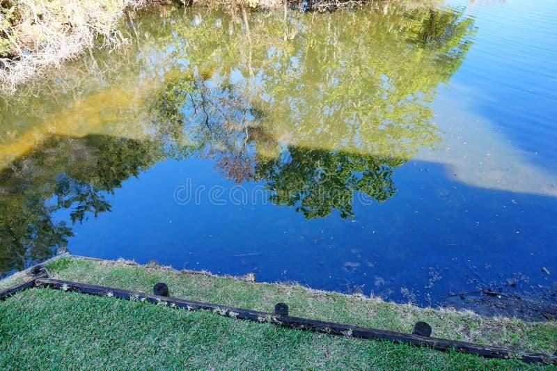 Charca azul con la reflexión imagenes de archivo