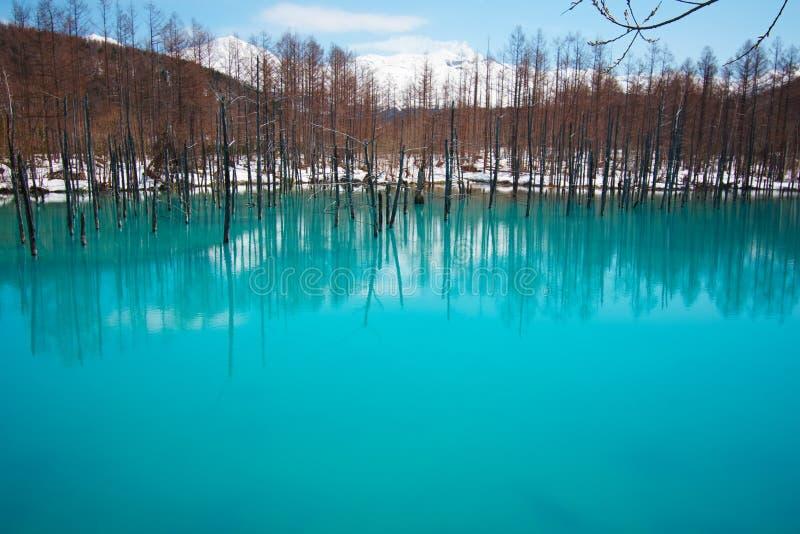 Charca azul de Biei Shirogane imagen de archivo