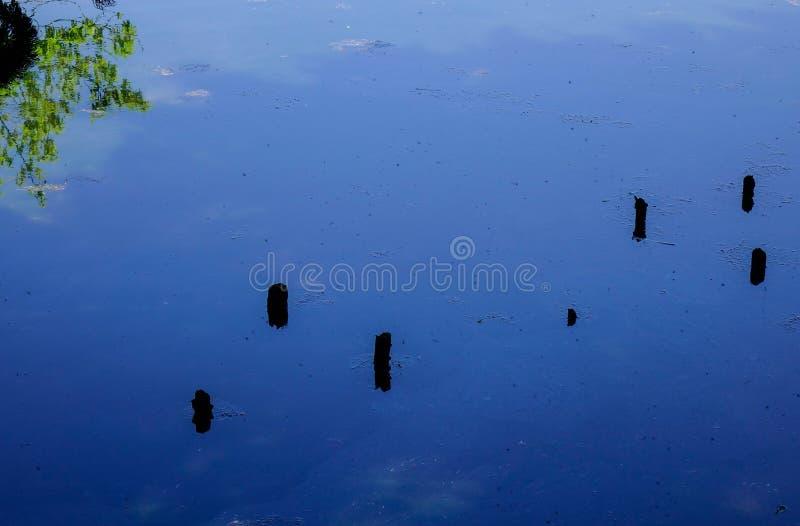 Charca azul en el día soleado imagen de archivo libre de regalías