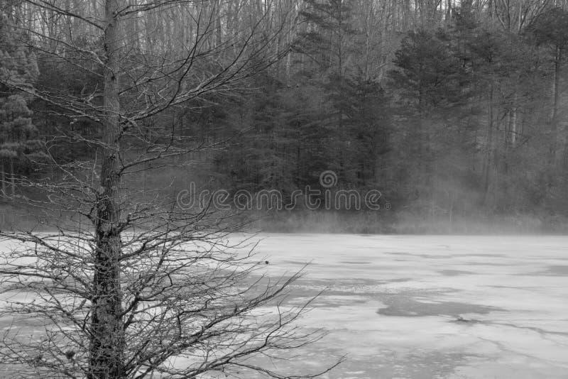 Charca brumosa en blanco y negro imagenes de archivo
