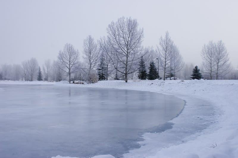 Charca congelada fotografía de archivo libre de regalías
