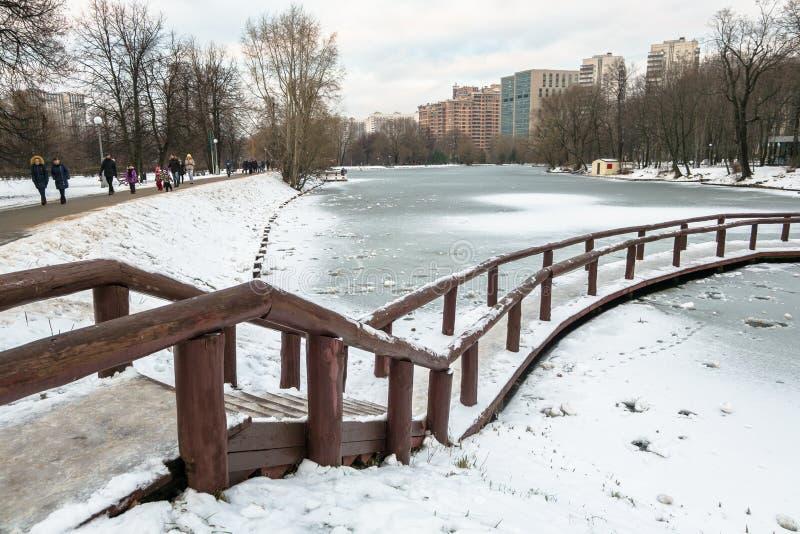 Charca congelada pensativa Desolated en parque de la ciudad en un día de invierno nublado imagen de archivo libre de regalías