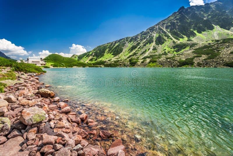Charca cristalina en las montañas de Tatra imágenes de archivo libres de regalías
