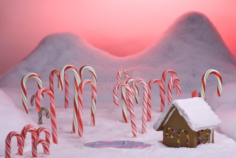 Charca de la puesta del sol del color de rosa del bosque del bastón de caramelo de la Navidad imagen de archivo libre de regalías