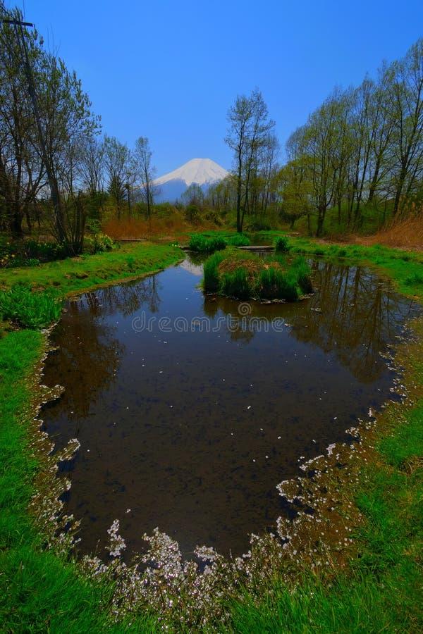 Charca del pueblo de Oshino en primavera y el Mt Fuji Japón imágenes de archivo libres de regalías