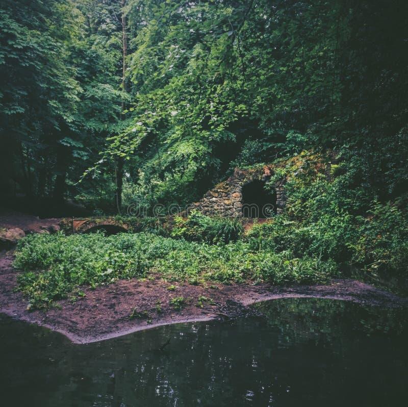 Charca en el bosque cerca del túnel y del pequeño puente rodeados por los árboles imagen de archivo libre de regalías