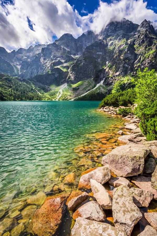 Charca en las montañas de Tatra en el amanecer imagen de archivo libre de regalías