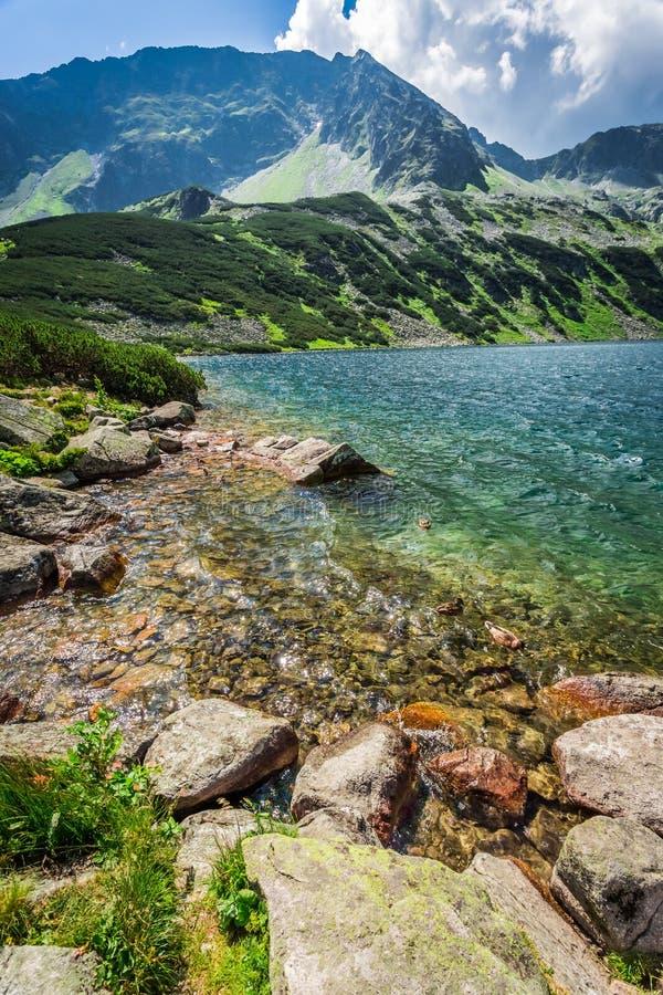 Charca hermosa en el medio de las montañas fotos de archivo