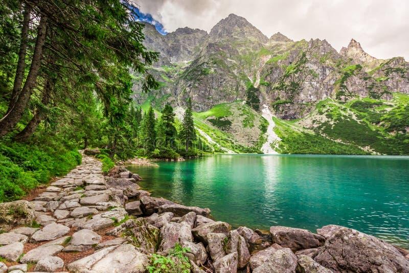 Charca hermosa en el verano, Polonia de las montañas imágenes de archivo libres de regalías