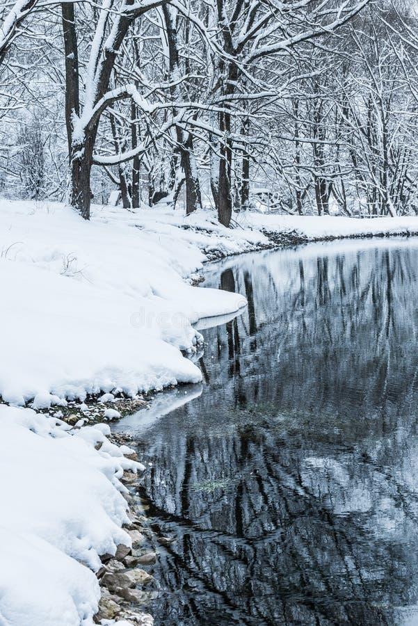 Charca no congelada en invierno imagenes de archivo
