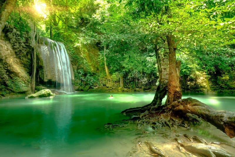 Charca profunda hermosa del bosque en el parque nacional de Erawan, Kanchanaburi foto de archivo