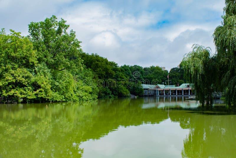 Charca verde ácida de la acuarela, Central Park, NYC fotos de archivo libres de regalías
