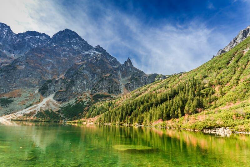 Charca verde en las montañas de Tatra, Polonia fotografía de archivo