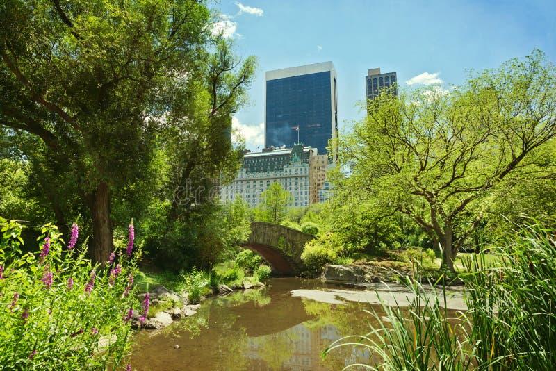 Charca y puente del Central Park New York City, NY, los E.E.U.U. imágenes de archivo libres de regalías