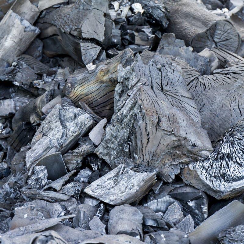 charcoal foto de stock royalty free