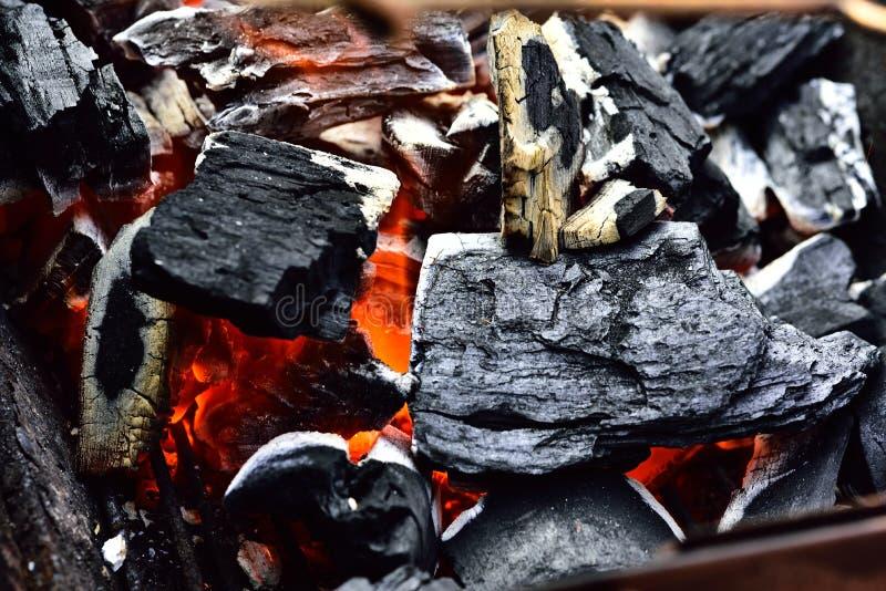 charcoal imagem de stock royalty free