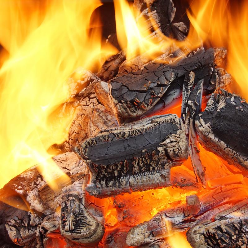 Free Charcoal Burning In BBQ Or In The Fireplace Royalty Free Stock Photography - 41024437