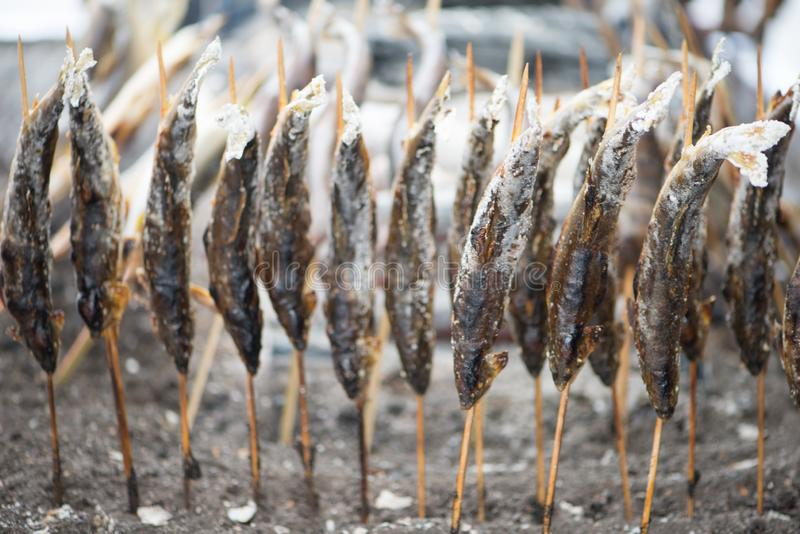 Charcoal grilled Ayu fish with salt. NIKKO, JAPAN - NOVEMBER 08, 2018:Charcoal grilled Ayu fish with salt. Traditional Japanese street food at Kegon waterfall in royalty free stock photos
