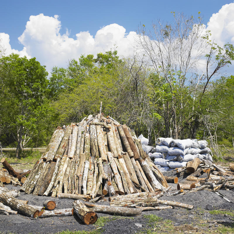 Charcoal pile royalty free stock image