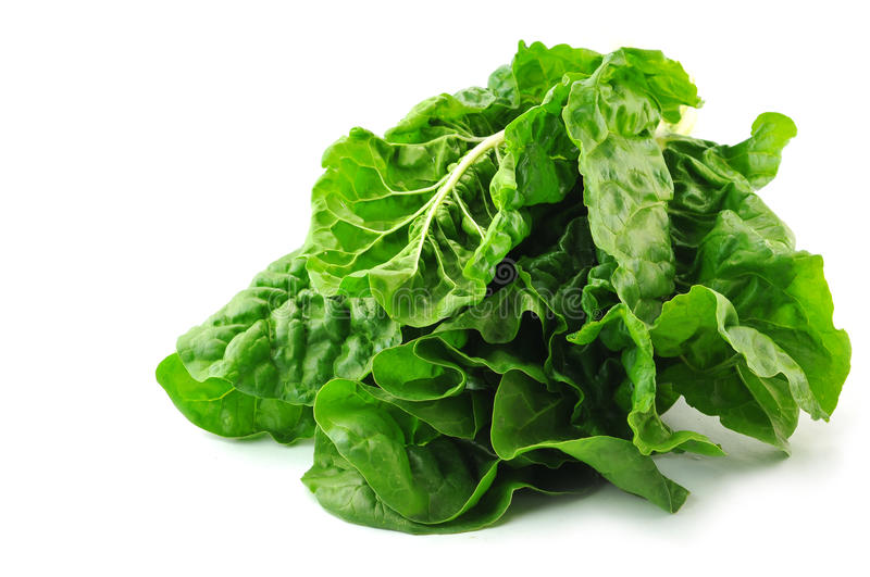Chard bunch. Chard (Collards, Greens, Kale, Mustards, Spinach) isolated on the white royalty free stock images