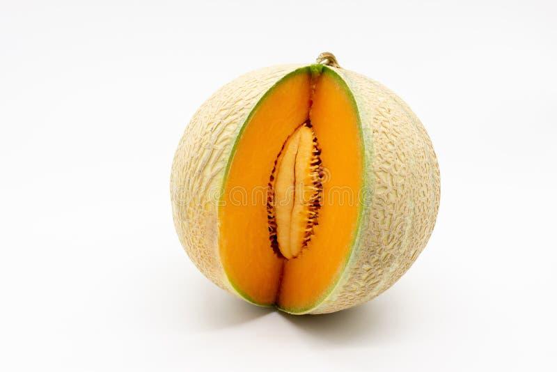Charentais/cantalupe Melone stockfoto
