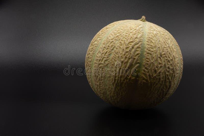Charentais/cantalupemelon arkivbild