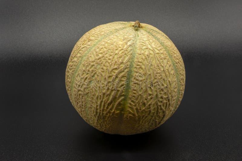 Charentais/cantalupemelon royaltyfria foton