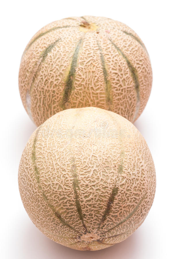Download Charentais Melons In Vertical Format Stock Photo - Image: 26256226