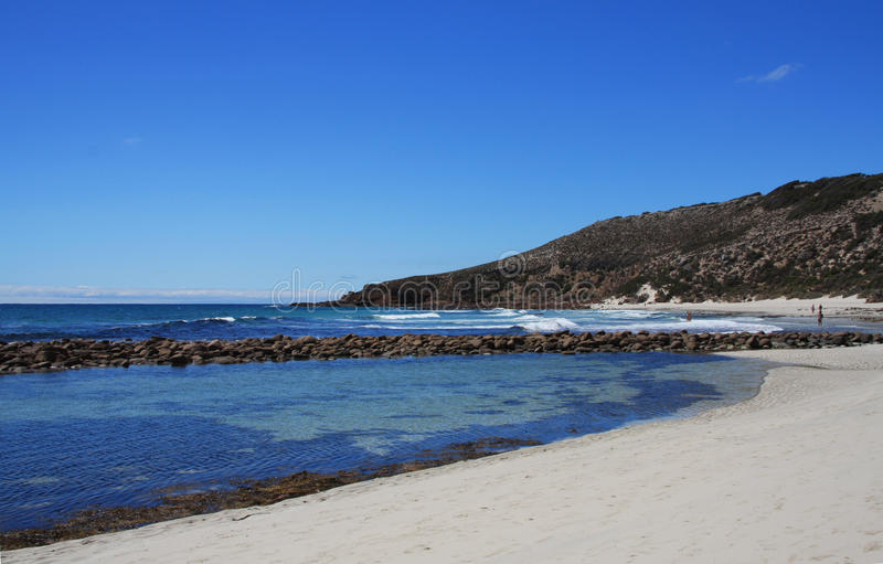 Charge l'Australie du sud d'île de kangourou de baie photos libres de droits