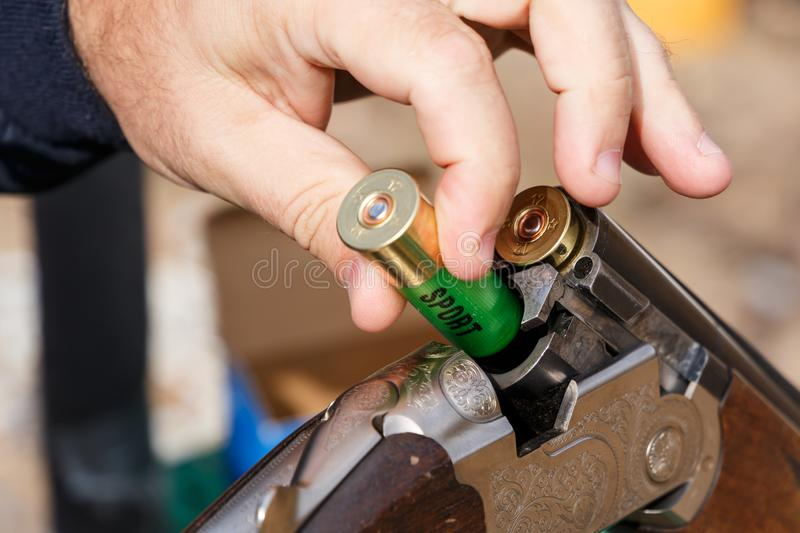 Charging a hunting rifle. Male hunter charges a double-barreled shotgun rounds stock photo