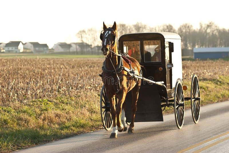 Chariot amish image libre de droits