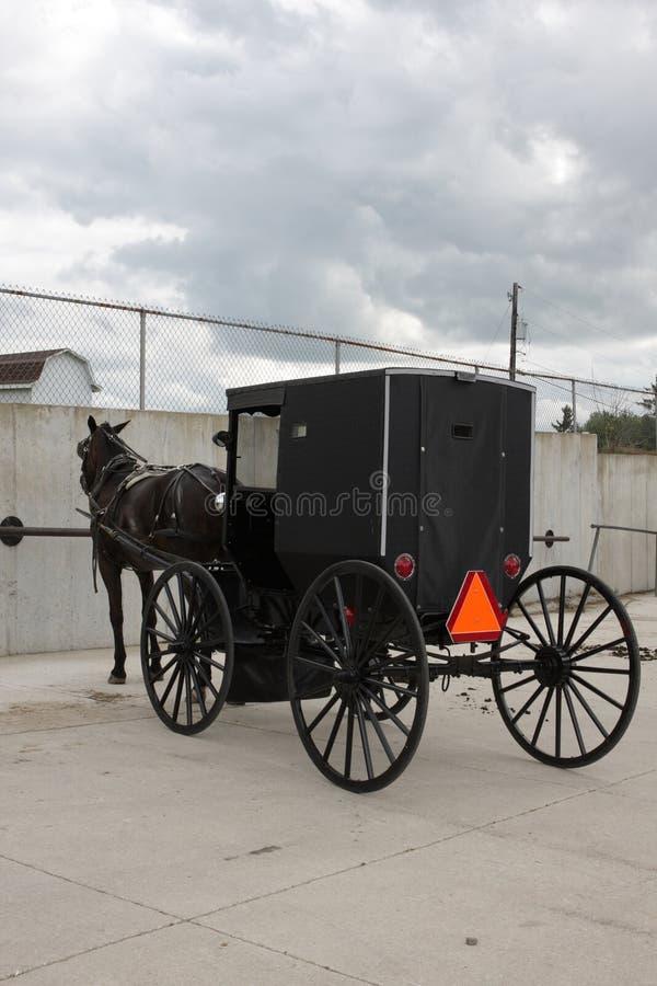 Chariot avec un cheval images libres de droits
