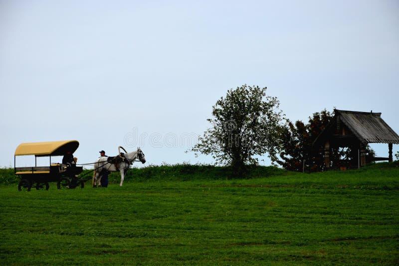 Chariot avec un cheval photographie stock libre de droits