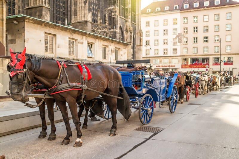 Chariot de cheval à Vienne photographie stock libre de droits