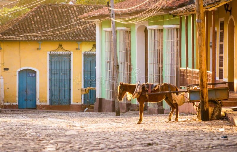 Chariot de cheval au Trinidad colonial, Cuba image stock