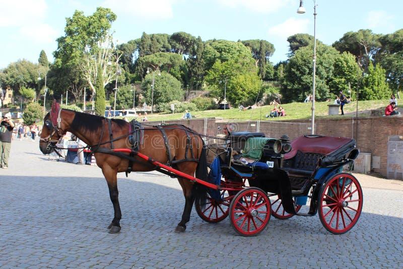 Chariot de cheval chez Colosseo ou Colosseum - Rome, Italie photo stock