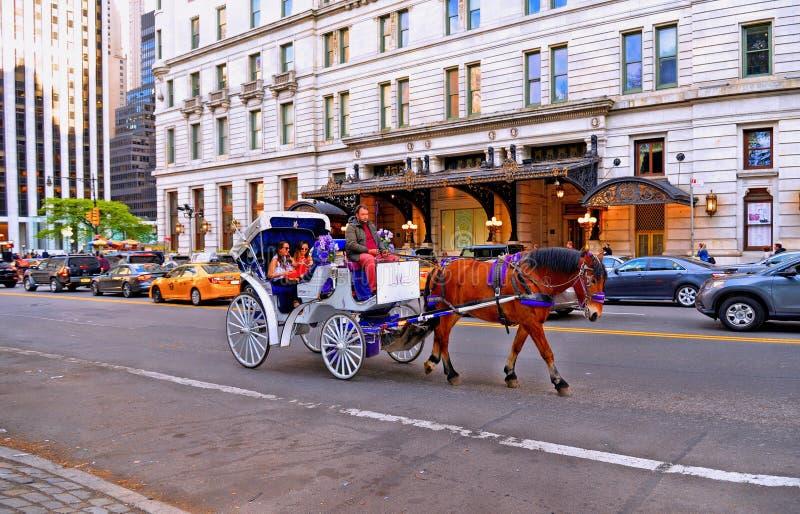 Chariot de cheval chez le Central Park dans l'hôtel avant de plaza à New York, les manières les plus pittoresques et les plus rom photos stock