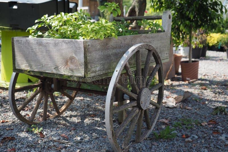 Chariot de jardin de vintage images libres de droits