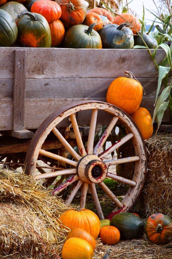 Chariot de potiron de moisson photos stock