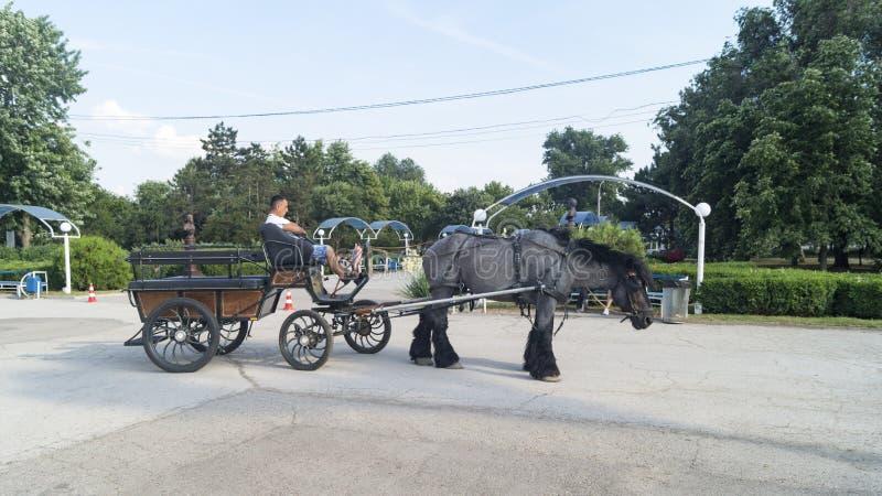 Chariot de Tyraspol photos libres de droits
