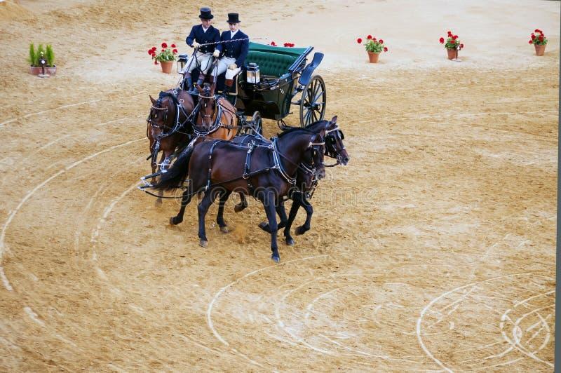 Chariot dessiné par le pur sang quatre photos stock