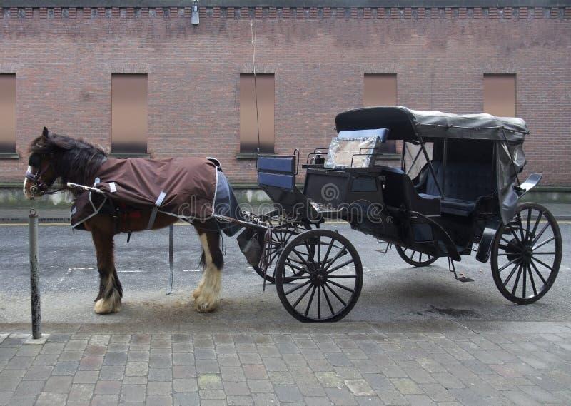 Chariot hippomobile à Dublin images libres de droits