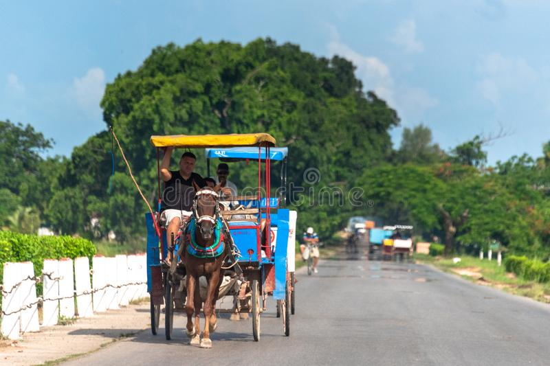 Chariot hippomobile conduisant dans la route rurale, Cuba photos stock